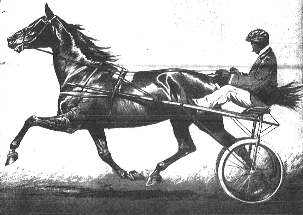 Inaugural Four County Fair Advertisement, harness horse